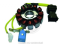 "Stator 12 Polos Trifase 12V 170W (Motor Piaggio ""Leader"" 4T) [04168021]"